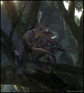 Sierra-117 – Jackal-Tree Thumbnail
